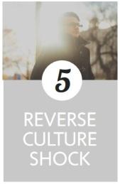 REVERSE_PHASE